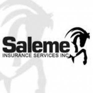 Saleme Insurance