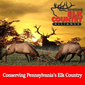 Keystone Elk Country Alliance