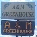 A & M Greenhouse