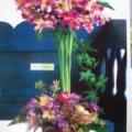 Marvin-Reeder Florists