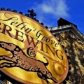 Selin's Grove Brewing Company