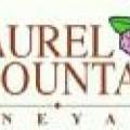 Laurel Mountain Vineyard