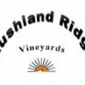 Rushland Ridge Vineyards